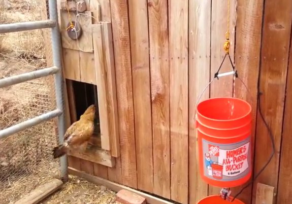Beautiful Water Powered Automatic Chicken Coop Door Opener